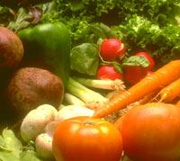 Хранение свежих овощей и фруктов