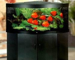 Первое, с чего нужно начать воплощение идеи в жизнь – точно определить место, где будет стоять аквариум