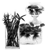 Кстати, лучше, если ваши цветы растут в керамических горшках с пористыми стенками, хорошо впитывающими влагу